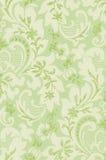 Teste padrão floral pálido delicado ilustração stock