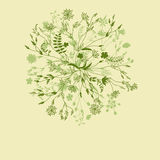 Teste padrão floral redondo da natureza verde Imagens de Stock