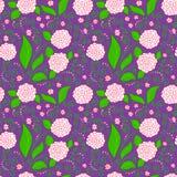 Teste padrão floral roxo Fotografia de Stock