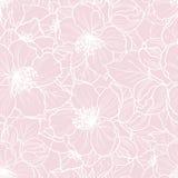 Teste padrão floral sem emenda Fotografia de Stock