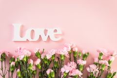 Teste padrão floral (sem emenda) Fotografia de Stock Royalty Free