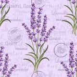 Teste padrão floral sem emenda Fotografia de Stock Royalty Free