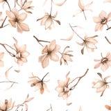Teste padrão floral sem emenda com magnólias em um fundo branco, aquarela Fotos de Stock Royalty Free