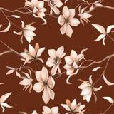 Teste padrão floral sem emenda com magnólias em um fundo marrom, aquarela Imagens de Stock Royalty Free