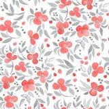 Teste padrão floral sem emenda com ramo 20 da flor Imagem de Stock Royalty Free
