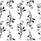Teste padrão floral sem emenda com rosas Vetor Fotografia de Stock Royalty Free