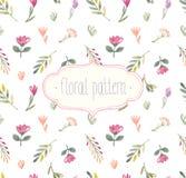 Teste padrão floral sem emenda da aquarela ilustração stock
