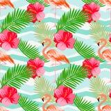 Teste padrão floral sem emenda do verão do vetor com flamingo Imagem de Stock