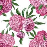 Teste padrão floral sem emenda excelente e delicado com as peônias de florescência isoladas no fundo branco, projeto pintado à mã ilustração do vetor