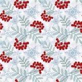 Teste padrão floral sem emenda Galhos de Rowan Fotos de Stock Royalty Free