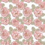 Teste padrão floral sem emenda Rosas 1 Fotografia de Stock