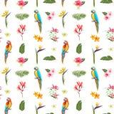 Teste padrão floral sem emenda tropical do verão Para papéis de parede, fundos, texturas, matéria têxtil, cartões ilustração stock