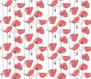 Teste padrão floral tirado mão do vetor, fundo branco, papoilas vermelhas ilustração stock