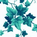 Teste padrão floral verde Fotografia de Stock