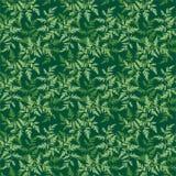 Teste padrão floral verde Fotos de Stock Royalty Free