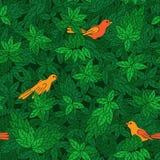 Teste padrão foliáceo com pássaros. Foto de Stock