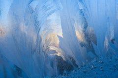 Teste padrão gelado azul do close-up similar como penas e sol do inverno na placa de vidro imagem de stock