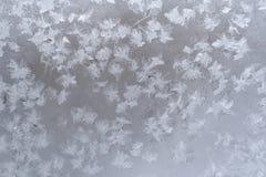 Teste padrão gelado do close-up de flocos de neve congelados na placa de janela imagem de stock royalty free