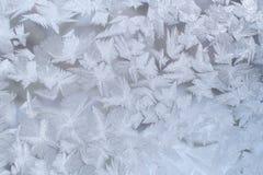 Teste padrão gelado do inverno na placa de janela com os flocos de neve extravagantes grandes Fotos de Stock Royalty Free