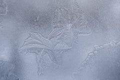 Teste padrão gelado do inverno translúcido delicado similar como sae no vidro de janela foto de stock royalty free