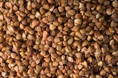 Teste padrão gerado pelo groat de trigo mourisco dourado seco Foto de Stock