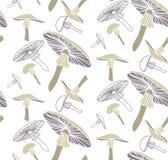 teste padrão Linha-colorido do fungo ilustração stock