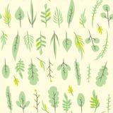 Teste padrão liso simples sem emenda com folha Contexto floral botânico da telha Imagem de Stock Royalty Free
