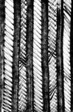 Teste padrão listrado tirado mão Ilustração Textured Imagens de Stock Royalty Free