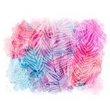 Teste padrão na moda com teste padrão exótico das folhas no fundo azul cor-de-rosa da aquarela Ilustração do vetor, elementos do  Fotografia de Stock Royalty Free