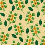 Teste padrão natural da decoração das folhas da flor floral Fotos de Stock
