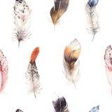 Teste padrão natural do boho da pena de pássaros da aquarela Textura sem emenda boêmia com as penas tiradas mão Boho da pena Fotos de Stock Royalty Free