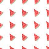 Teste padrão natural sem emenda da cor da melancia madura vermelha Teste padrão sem emenda natural de frutos do mercado do jardim Fotos de Stock Royalty Free