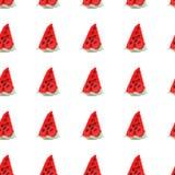 Teste padrão natural sem emenda da cor da melancia madura vermelha Teste padrão sem emenda natural de frutos do mercado do jardim Imagem de Stock Royalty Free