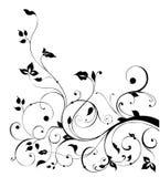 Teste padrão preto da flor e das videiras Imagens de Stock