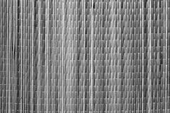 Teste padrão preto e branco da esteira do sraw da cor Fotos de Stock Royalty Free