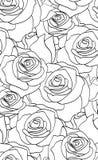 Teste padrão preto e branco sem emenda com rosas Fotografia de Stock Royalty Free