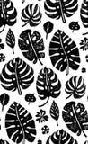 Teste padrão preto na moda sem emenda com folhas de palmeira exóticas de Monstera em um fundo branco Ilustração botânica do vetor Imagem de Stock Royalty Free