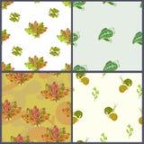 Teste padrão quatro floral Fotografia de Stock Royalty Free