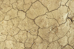 Teste padrão rachado seco da textura do fundo do deserto da sujeira