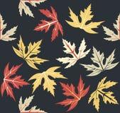 Teste padrão sem emenda à moda com folhas de outono Fotografia de Stock