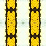 teste padrão sem emenda abstrato da asa da borboleta Imagens de Stock