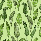 Teste padrão sem emenda abstrato das folhas com folhas tropicais ilustração do vetor