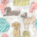 Teste padrão sem emenda bonito do vetor com cães ilustração stock