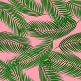 Teste padrão sem emenda bonito do vetor com folhas de palmeira no fundo cor-de-rosa ilustração stock
