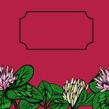 Teste padrão sem emenda bonito do vetor Trevo brilhante do verão ilustração royalty free