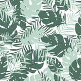 Teste padrão sem emenda bonito e do divertimento do verão Folhas tropicais Imagens de Stock Royalty Free