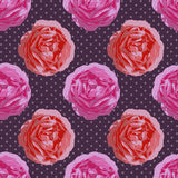 Teste padrão sem emenda chique gasto Rosas do vintage do vetor Fotos de Stock Royalty Free