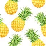 Teste padrão sem emenda com abacaxis da aquarela Fotografia de Stock