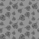 Teste padrão sem emenda com as bolas vegetais do alho fresco para o projeto do fundo quadriculação Imagem de Stock