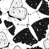 Teste padrão sem emenda com as borboletas bonitas com céu estrelado para dentro em cores preto e branco ilustração royalty free